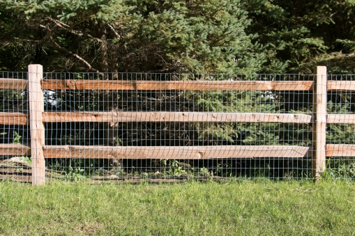 3-rail western red cedar split rail fence with 2x4x4' galvanized, 14 gauge welded wire attached