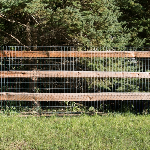 3-rail western red cedar split rail fence with 2x4x4' galvanized, 14 gauge welded wire attached