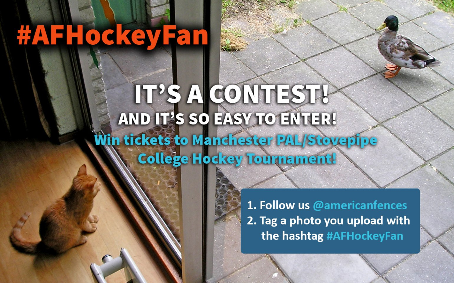 hockeycontestinsta2